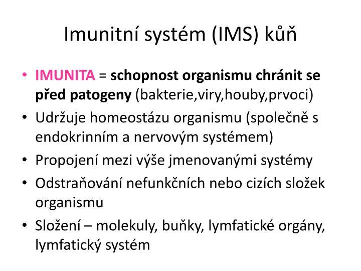 Imunitní systém (IMS) kůň