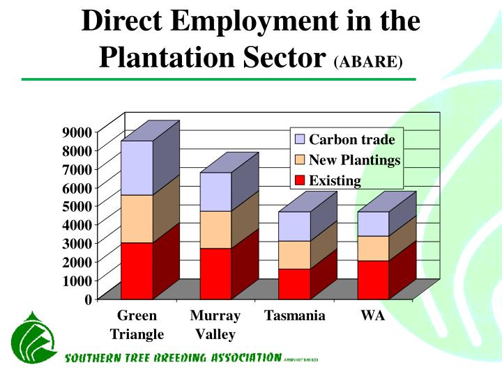 Direct Employment in the Plantation Sector