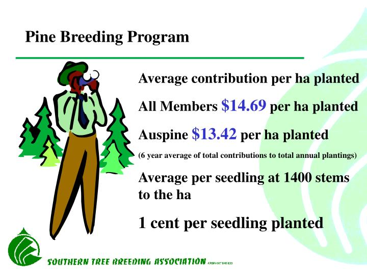 Pine Breeding Program