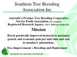 southern tree breeding association inc