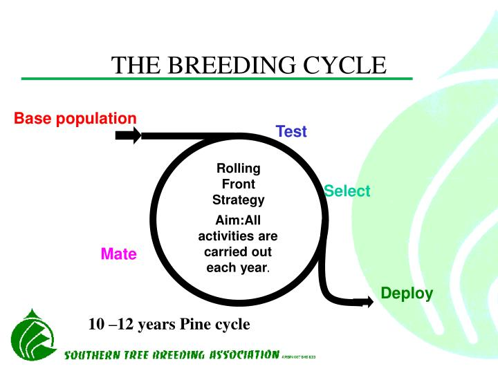 THE BREEDING CYCLE