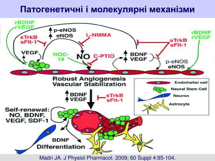 Патогенетичні і молекулярні механізми