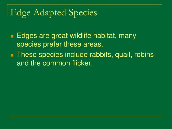 Edge Adapted Species