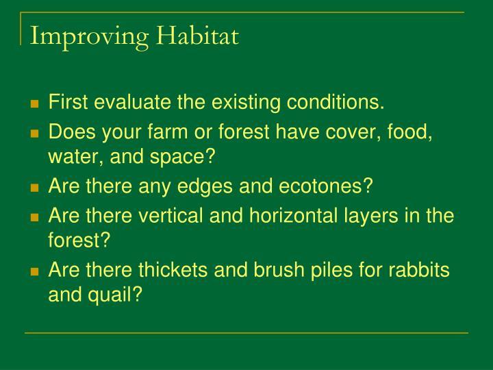 Improving Habitat