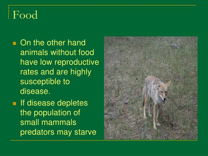 On the other hand animals without food have low reproductive rates and are highly susceptible to disease.