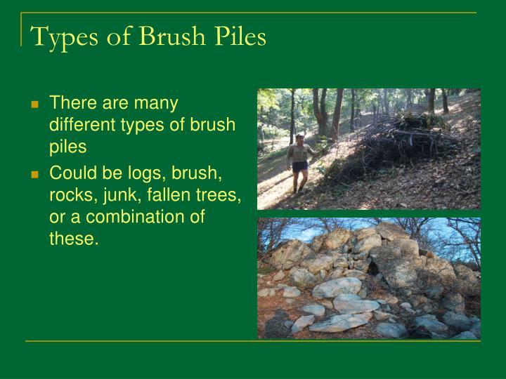 Types of Brush Piles