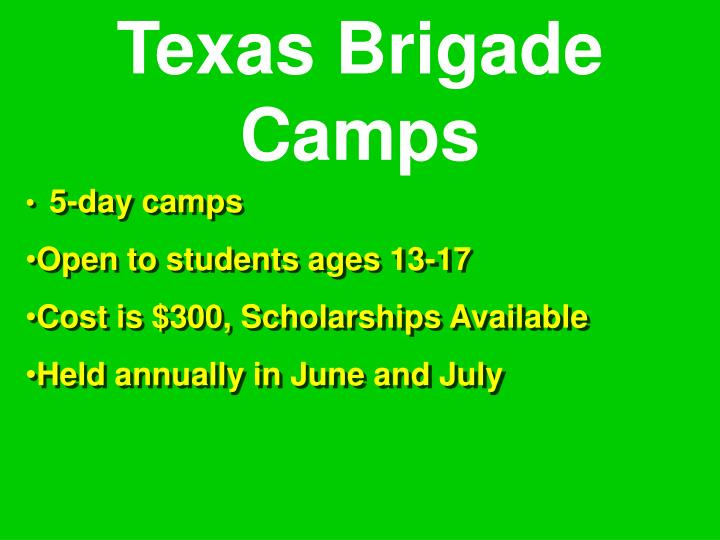 Texas Brigade