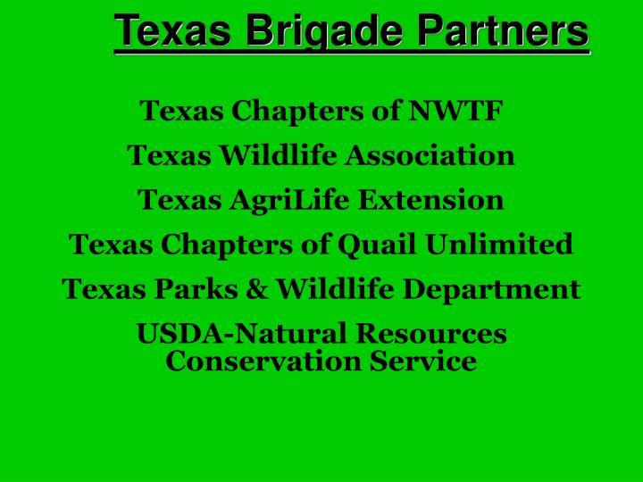 Texas Brigade Partners