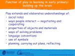 function of play in learning in early primary building up the brain