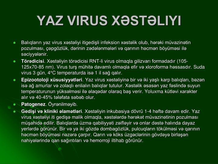 YAZ VIRUS XƏSTƏLIYI