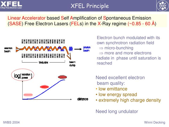 XFEL Principle