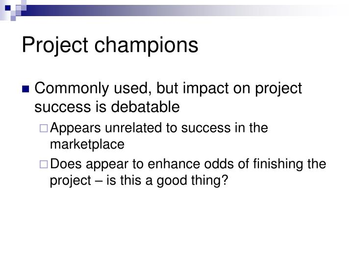 Project champions