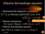 effective schroedinger equation