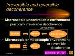 irreversible and reversible decoherence