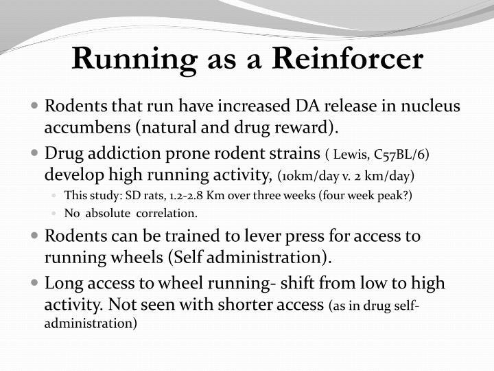 Running as a Reinforcer