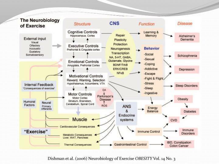 Dishman et al. (2006) Neurobiology of Exercise