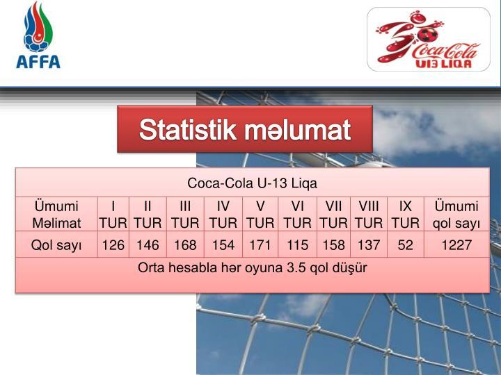 Statistik məlumat