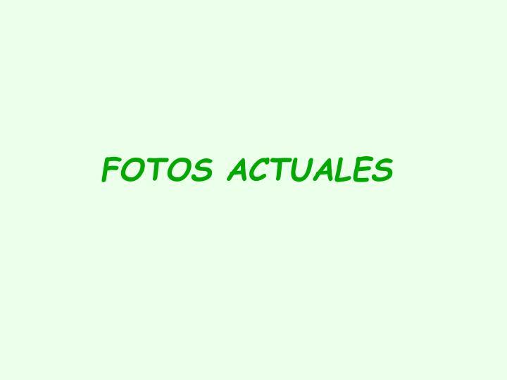FOTOS ACTUALES
