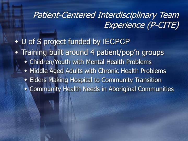 Patient-Centered Interdisciplinary Team Experience (P-CITE)
