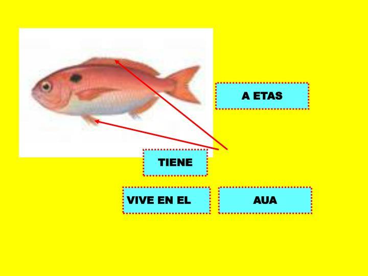 A ETAS