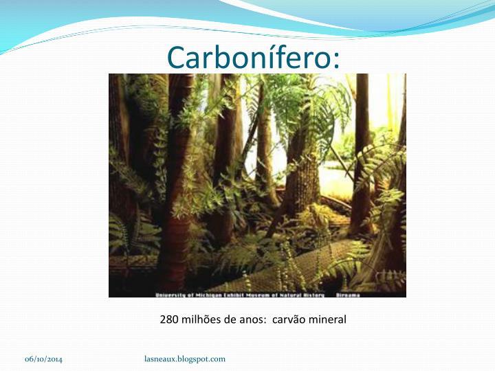 Carbonífero: