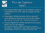 flux de capitaux nkf