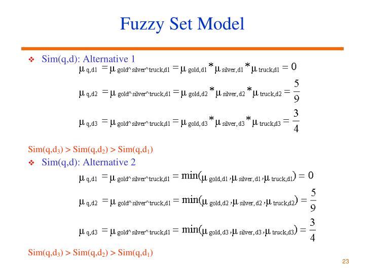 Fuzzy Set Model
