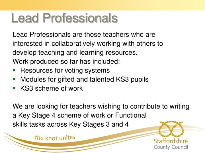Lead Professionals are those teachers who are