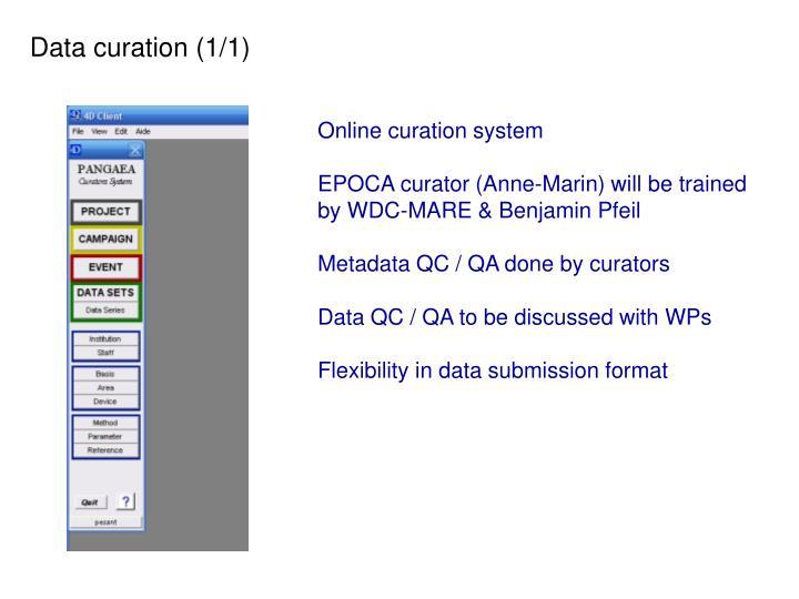 Data curation (1/1)