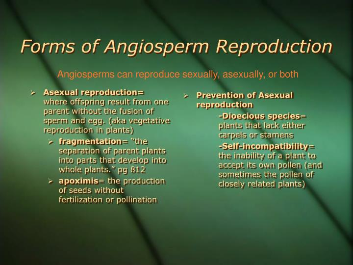 Forms of Angiosperm Reproduction