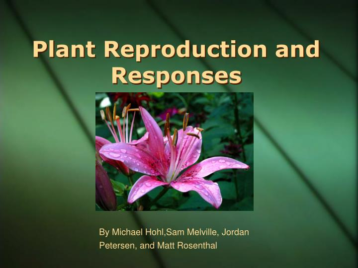 Plant reproduction and responses