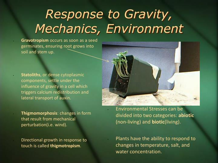 Response to Gravity, Mechanics, Environment