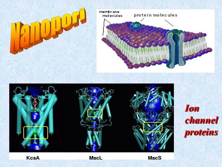Nanopori