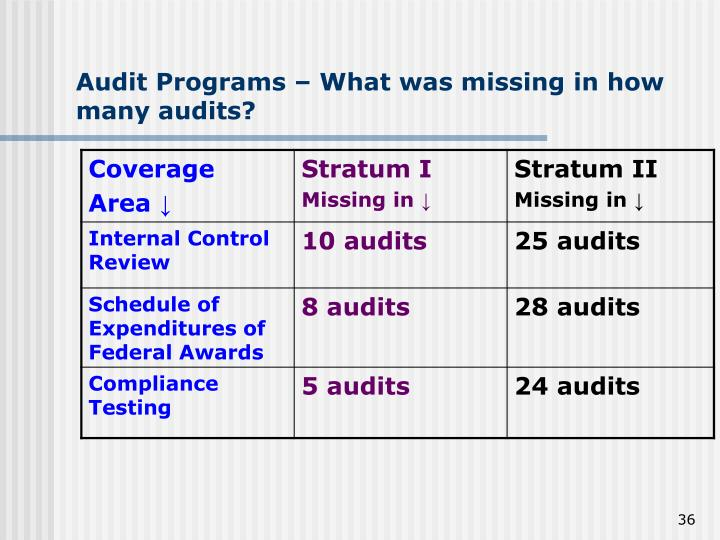 Audit Programs – What was missing in how many audits?