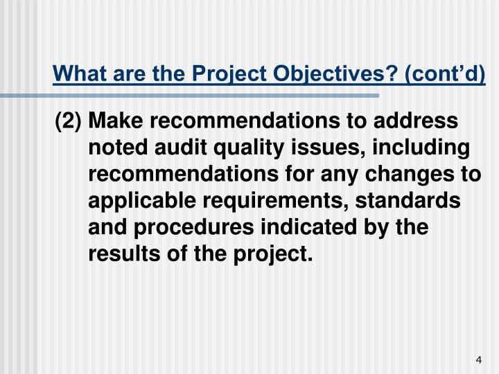 What are the Project Objectives? (cont'd)