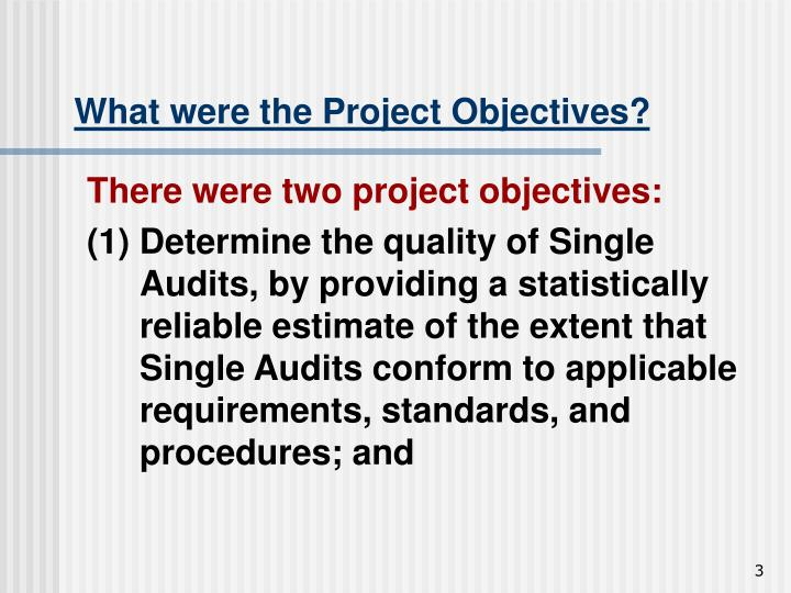 What were the Project Objectives?