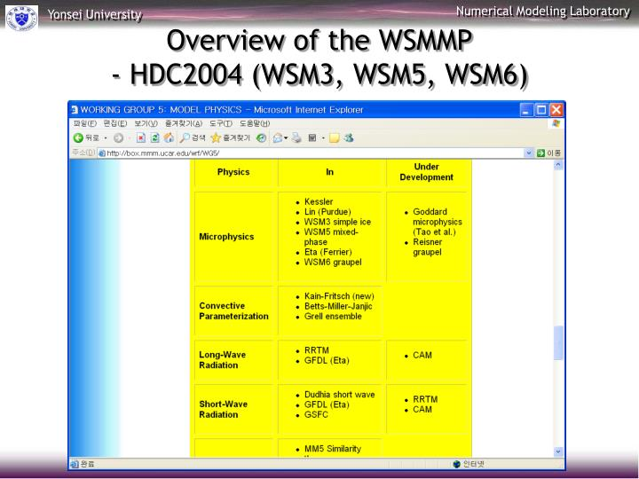 Overview of the WSMMP