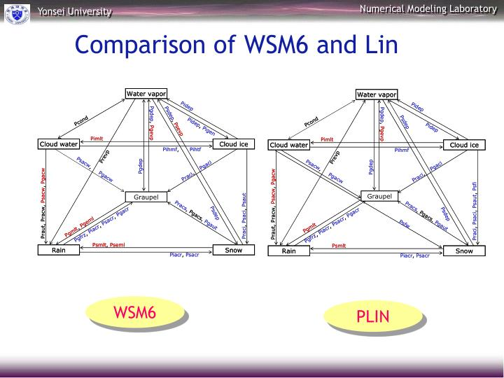 Comparison of WSM6 and Lin