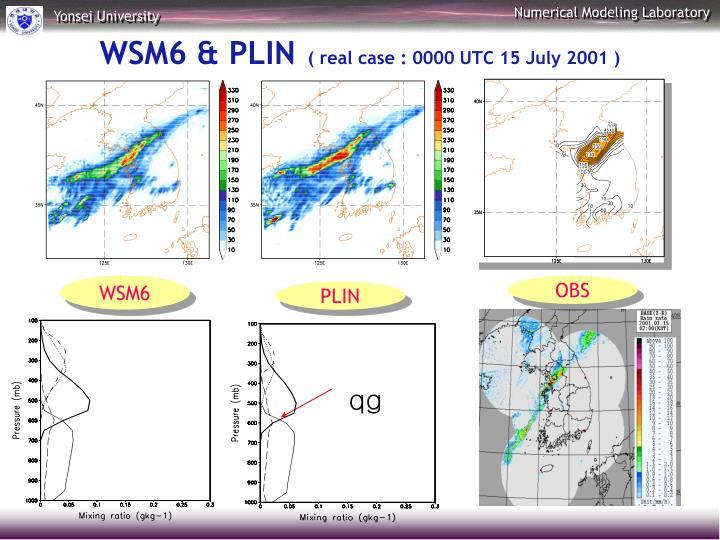 WSM6 & PLIN