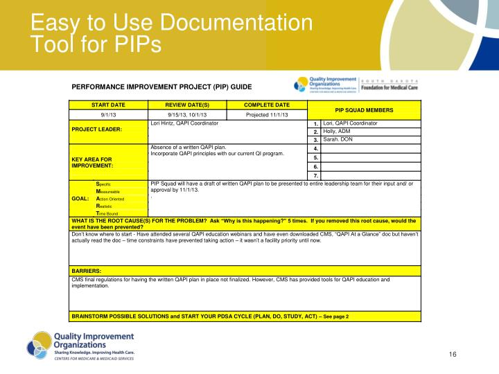 Easy to Use Documentation Tool for PIPs