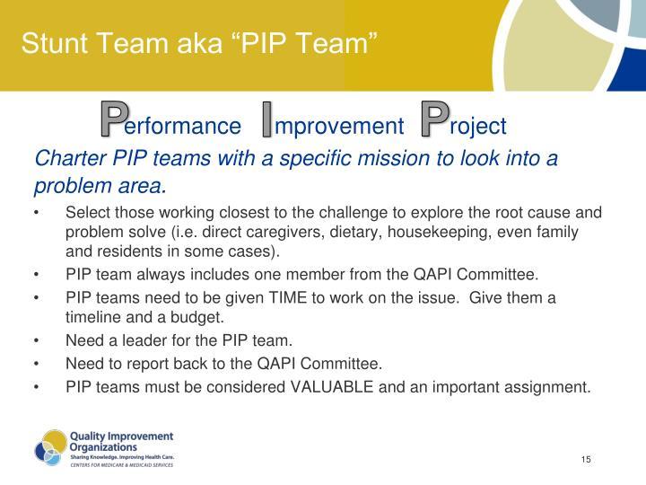 """Stunt Team aka """"PIP Team"""""""