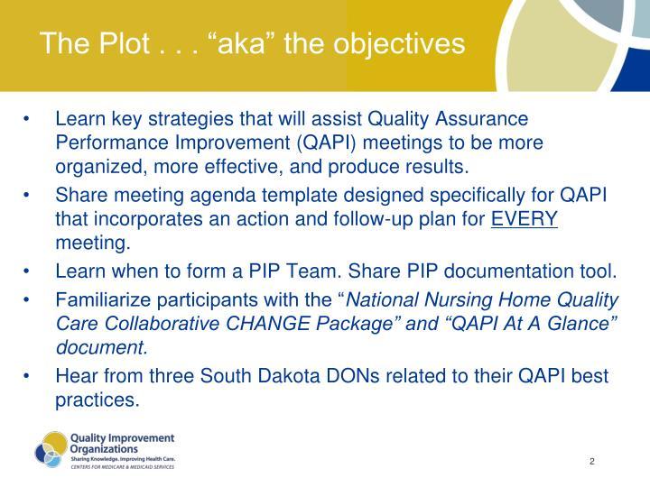 """The Plot . . . """"aka"""" the objectives"""