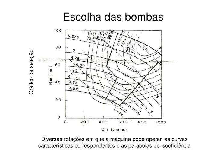 Escolha das bombas