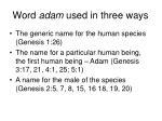 word adam used in three ways