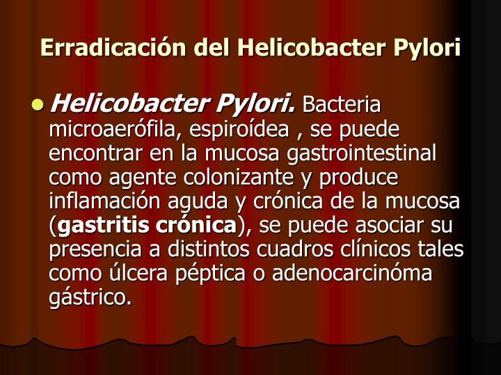 Erradicación del Helicobacter Pylori