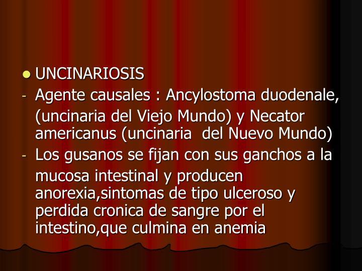 UNCINARIOSIS