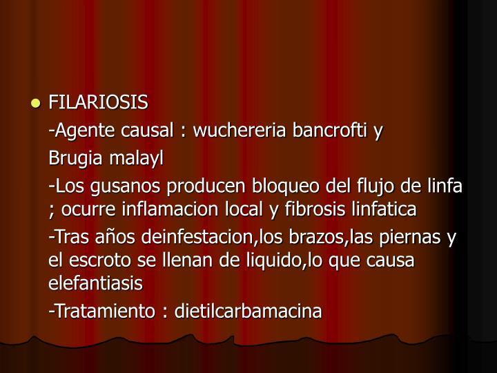 FILARIOSIS