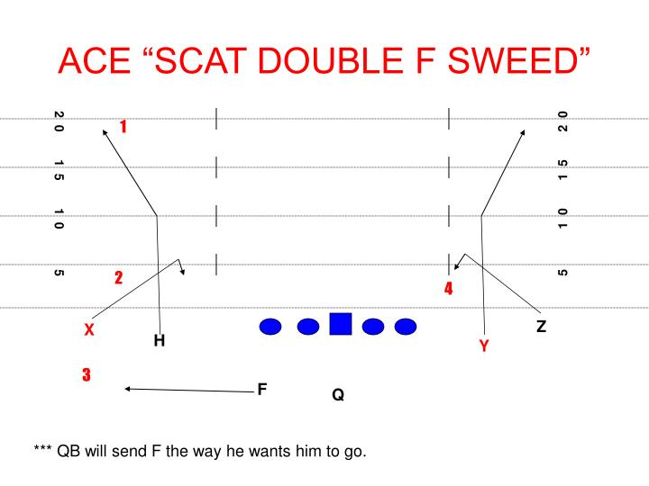 "ACE ""SCAT DOUBLE F SWEED"""