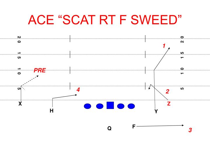 "ACE ""SCAT RT F SWEED"""