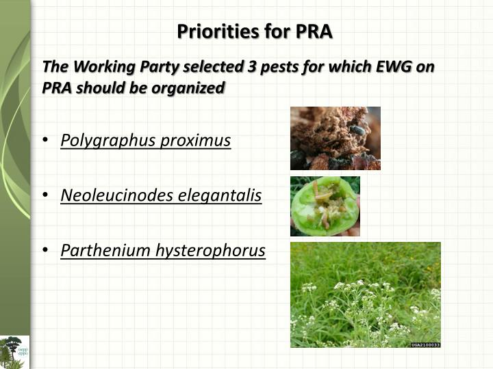 Priorities for PRA